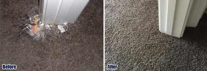 Pet Damaged Carpet Repair Malibu CA