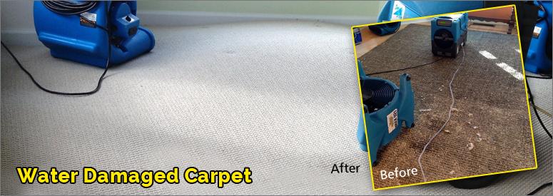 Water Damage Carpet Malibu